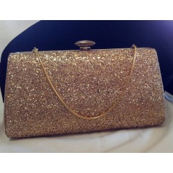 Golden Hard-side Evening Clutch Purse